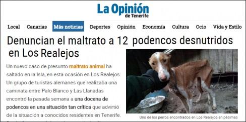 PACMA insta al gobierno canario a reformar la Ley de Protección Animal