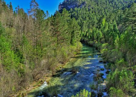 Parques Naturales: Se analizaron 70 aspectos de 21 espacios protegidos