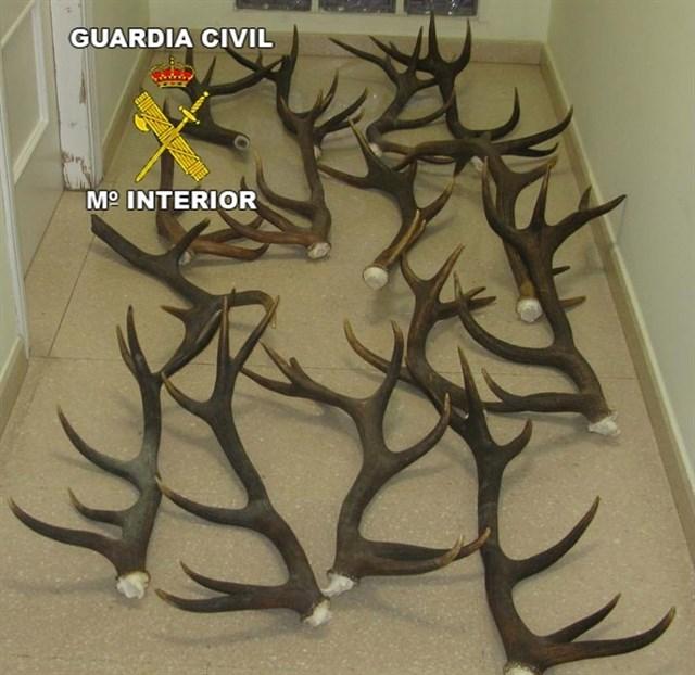 El dispositivo contra el furtivismo en la provincia de Jaén se activa este jueves con 334 agentes de la Guardia Civil