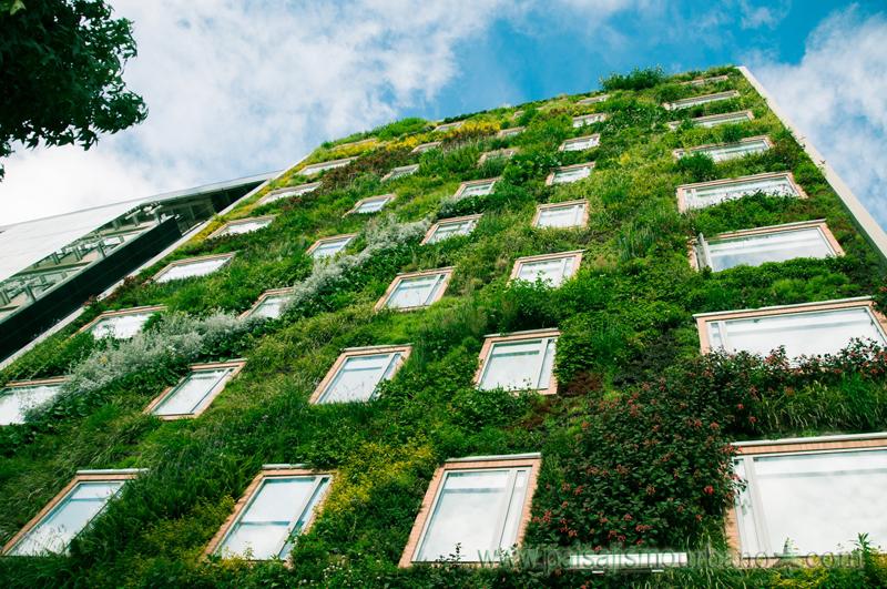 Proyecto paisajismo urbano for Jardines verticales panama