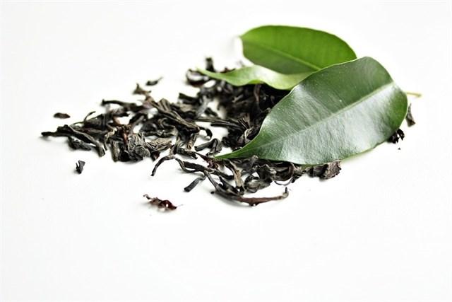 Un compuesto del té verde podría mejorar el deterioro de la memoria y la obesidad