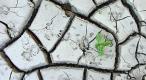 Medidas para combatir el cambio climático