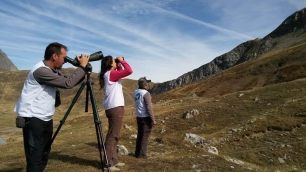 El Gobierno de Navarra participa en un proyecto transfronterizo de seguimiento de aves migratorias