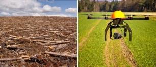 Innovadores drones para luchar contra la deforestación