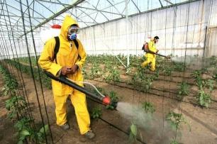España, la 'reina' de los pesticidas