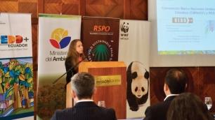 Ecuador hacia la certificación de producción sostenible de palma africana