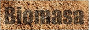 El futuro de la biomasa en España