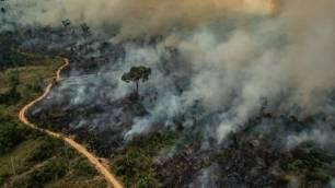 Causas de los Incendios en el Amazonas 2019