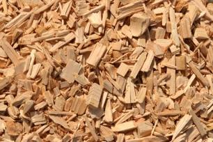 Curso de SEAS sobre Energía de la Biomasa, un puerta abierta al mundo laboral