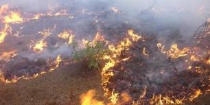 Extremadura modificará la Ley de Lucha contra Incendios Forestales