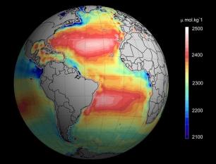 La acidificación creciente del océano, crónica de un 'suicidio' anunciado