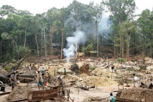 Confirmado se puede reducir al 50% las emisiones de la deforestación tropical
