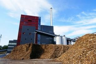 Plataforma tecnológica mexicana para producir biocombustibles de segunda generación
