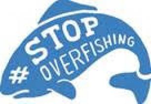 Los españoles no saben nada de la sobrepesca en Europa