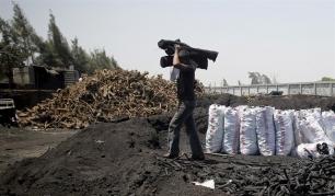 Judías precocinadas contra la deforestación en África