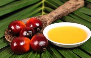 ¿Desaparecerá el aceite de palma de las 'marcas blancas'?