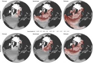 Plásticos en el Ártico