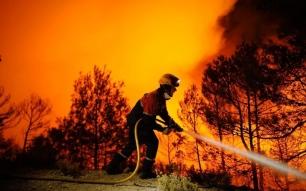 Los incendios forestales sistemáticos no pueden ser una casualidad