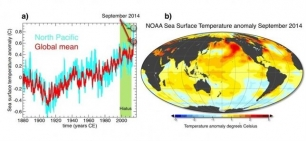 Tras una pausa de 14 años, la temperatura del océano este verano batió todos los registros
