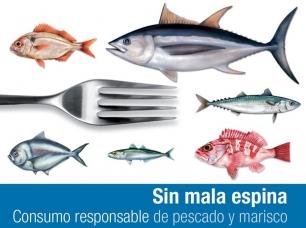 306_qech_sin-mala-espina-cartel