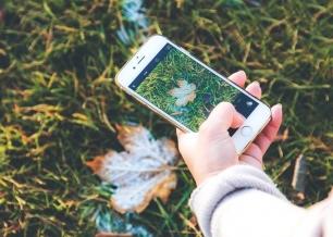 Las mejores aplicaciones para el 'Día del Medio Ambiente'
