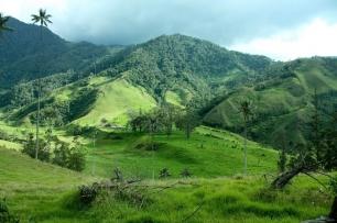 Colombia toma medidas para ser más 'verde'