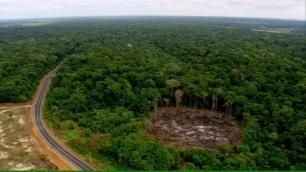 Noruega pierde la paciencia y recorta fondos para la protección de la Amazonia