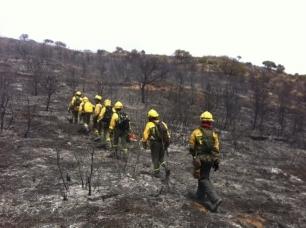 Castilla – La Mancha aprueba cinco planes comarcales de defensa contra incendios forestales para zonas de alto riesgo
