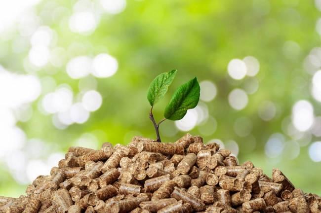 Un ahorro para las familias de hasta un 66% gracias a la Biomasa frente al coste del gasóleo