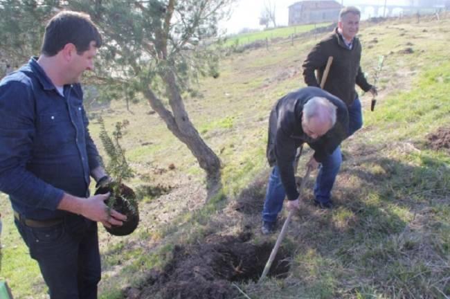 Cantabria. Plantan 45 árboles en Pesquera para mitigar la huella de carbono de la Feria del Queso