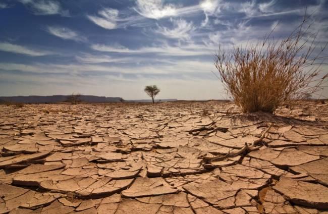 El cambio climático se ceba en Sierra Nevada, Doñana y Cabo de Gata