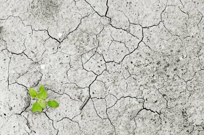 Ecologistas en Acción presenta sus observaciones al anteproyecto de Ley de Cambio Climático