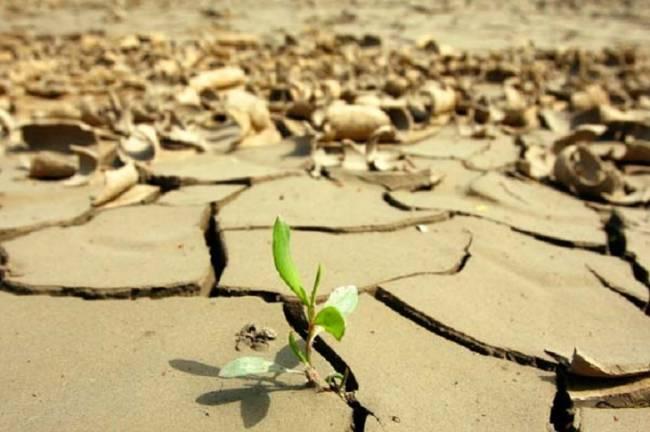 Alemania aportará 70 millones de euros adicionales al Fondo de Adaptación contra el cambio climático