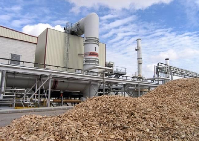 Más de mil alegaciones contra la incineradora de biomasa en Villaquilambre