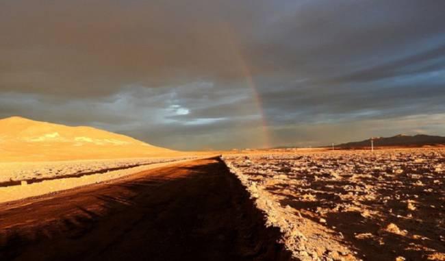 Lluvias sin precedentes arrasan la vida microbiana en el desierto de Atacama