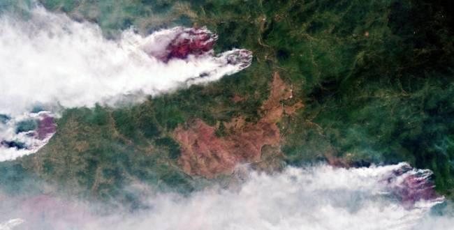La Oscilación Ártica, relacionada con más incendios forestales en Siberia