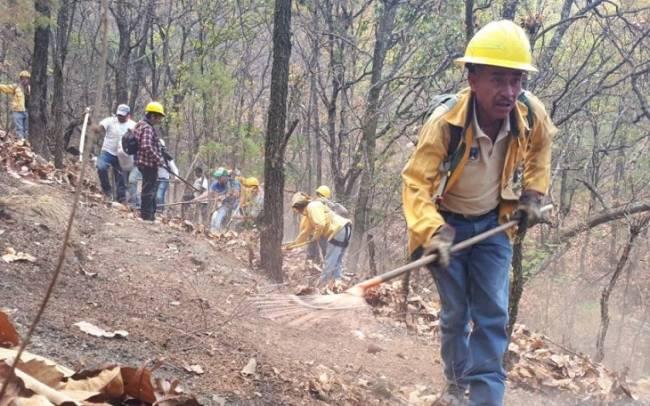 Gobierno de México despliega más de 3,800 brigadistas para fortalecer el combate de incendios forestales