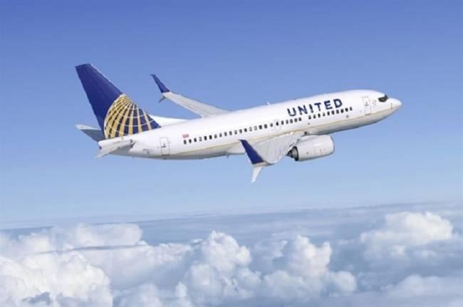 United Airlines suspende el transporte de mascotas en bodega