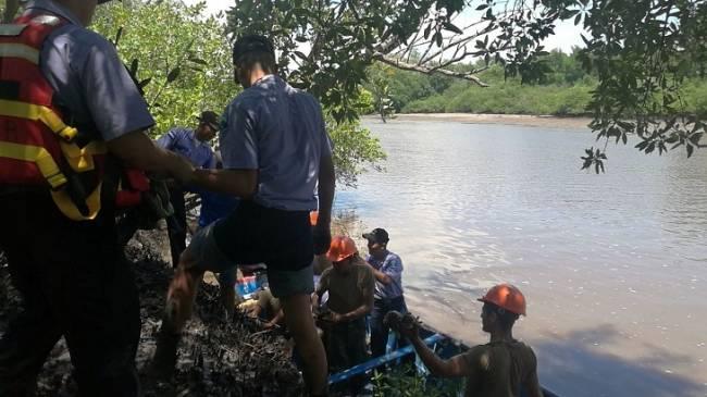 Tamiahua santuario del proyecto más ambicioso de reforestación de manglares en México