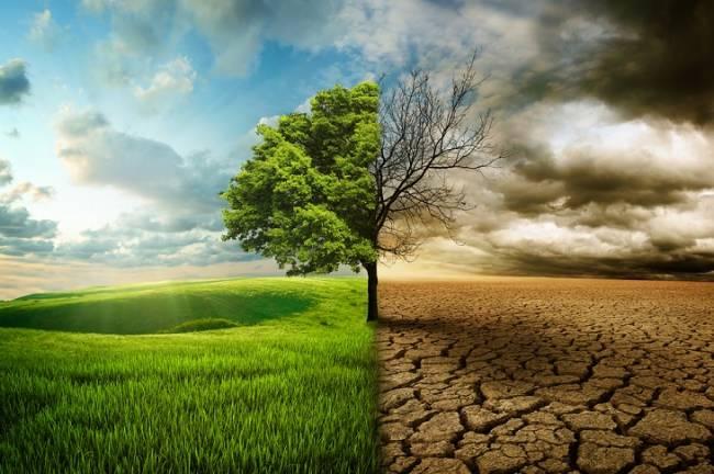 Diputación en Cádiz organiza un curso sobre Gestión Costera Integrada y Adaptación al Cambio Climático
