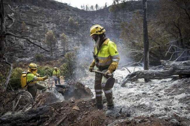 La Generalitat Valenciana crea la sociedad de gestión de emergencias que subrogará a los bomberos forestales de Tragsa