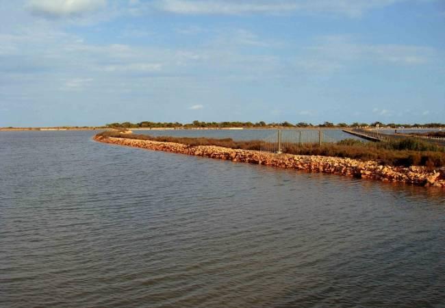 Trabajadores del sector turístico recibirán formación ambiental para poder difundir los valores naturales del Mar Menor