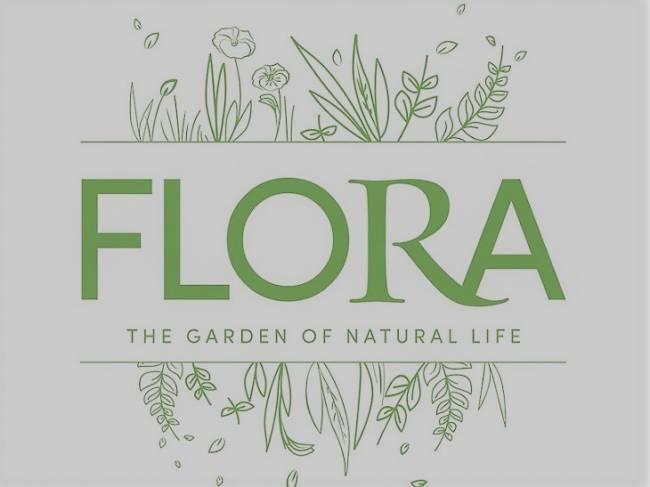Nuevo proyecto de Flora, directorio de Actividades para un mundo mejor