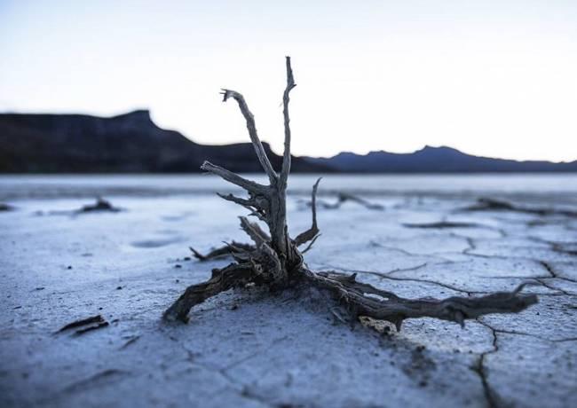 El Banco Santander es una de las entidades financieras del mundo que más contribuyen al cambio climático