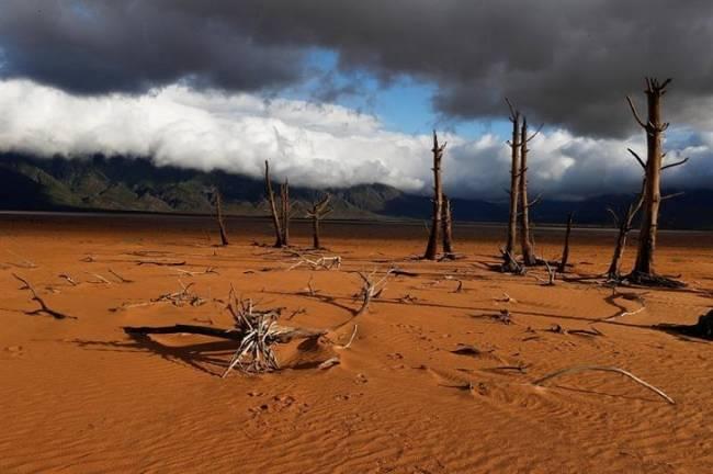 Tela marinera, los seres humanos están revirtiendo el reloj climático 50 millones de años