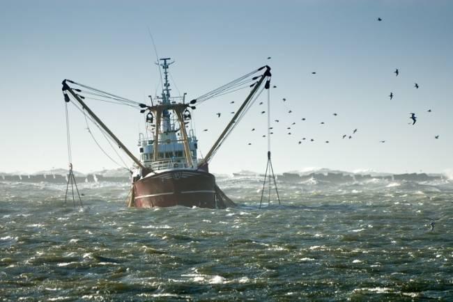 Europa sigue fomentando la sobrepesca