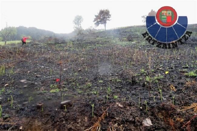 Detenido un ganadero por dos incendios forestales intencionados en Karrantza