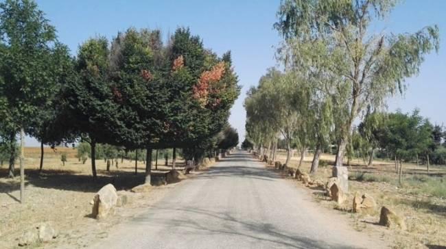 El Ayuntamiento de Villamayor en defensa de sus caminos públicos