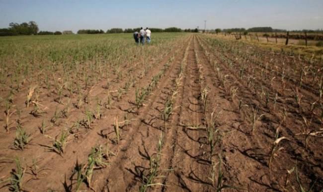 Argentina: Preocupa la sequía en el norte bonaerense