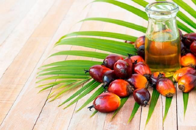 Trapa fulmina el aceite de palma de todos sus productos